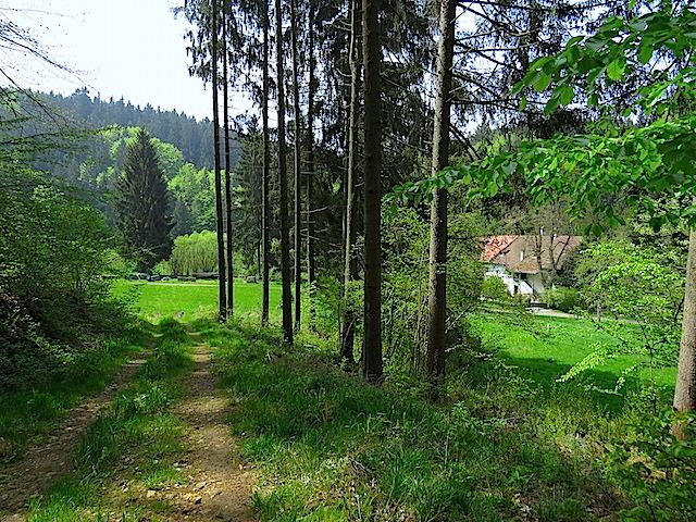 Die Hofmühle