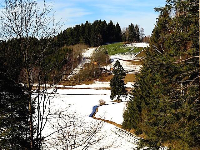 Winterwanderung zur Burgruine Anschau