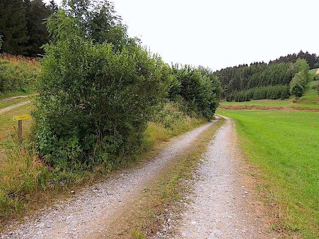 Richtung Schreinerhof