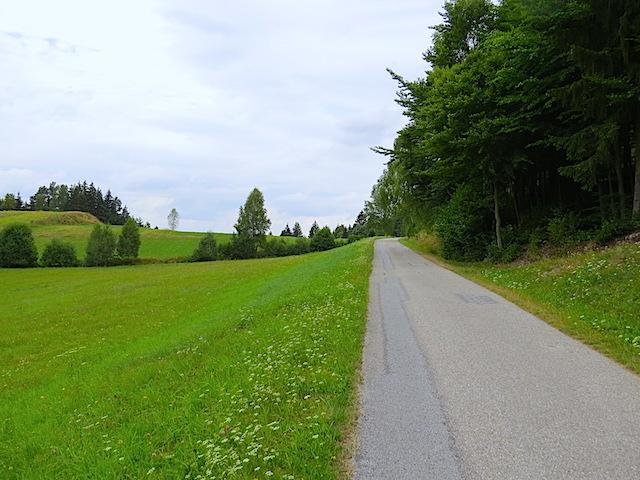 Blättergraben