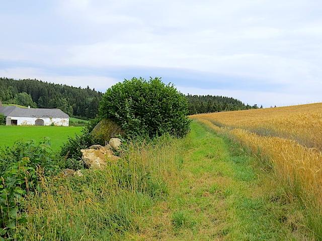 Richtung Hengstberg