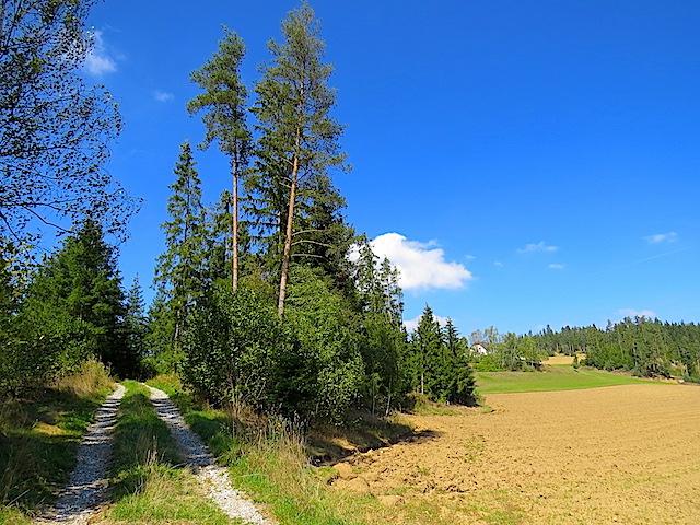 Richtung Bruckmühle