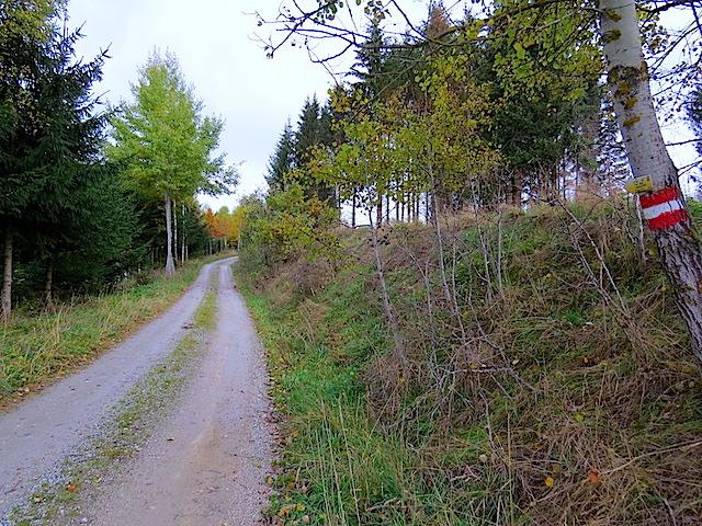 Richtung Groß Gerungs