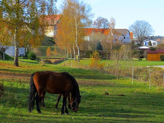 Jagenbach