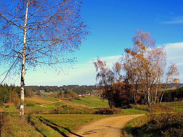 Richtung Jagenbach