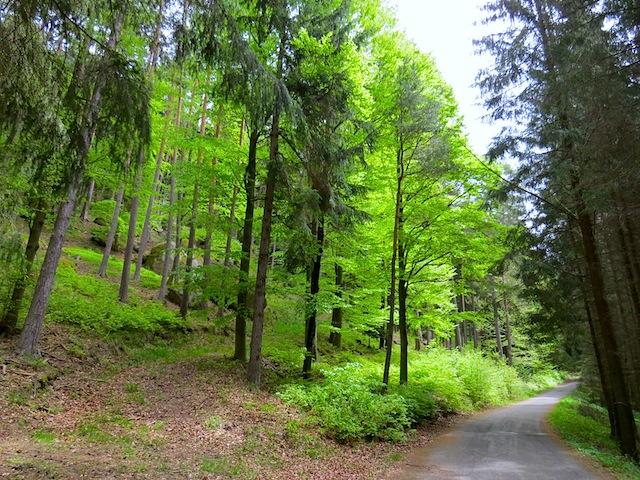 Erlebnis-Natur-Weg