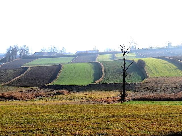Das Gradnitzbachtal