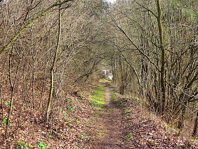 Sierningbachtal (Sierningbachtal