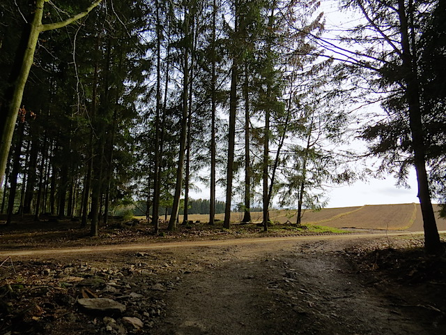 Zufahrt Kolmhütte - links