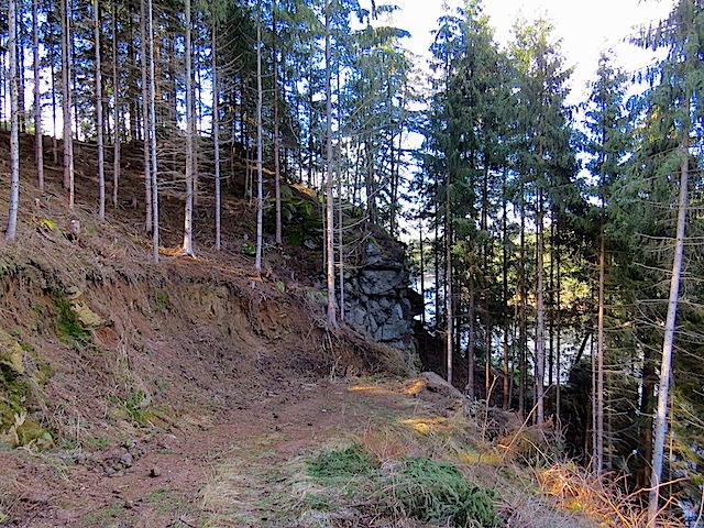 Forstweg beim Felsen