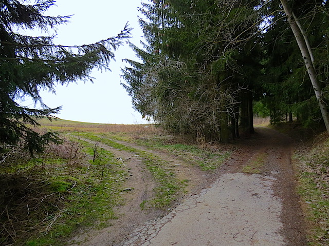 Bei der Weggabelung links