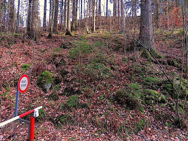 Aufstieg zum Forstweg
