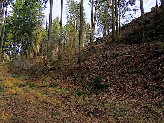 Beginn Forstweg