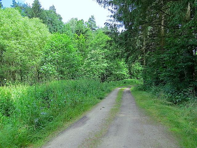 Im Purkenbachtal