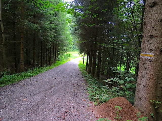 Richtung Schönbach