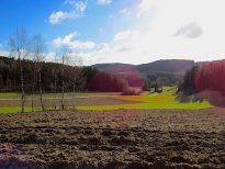 Südlich von Hausbach