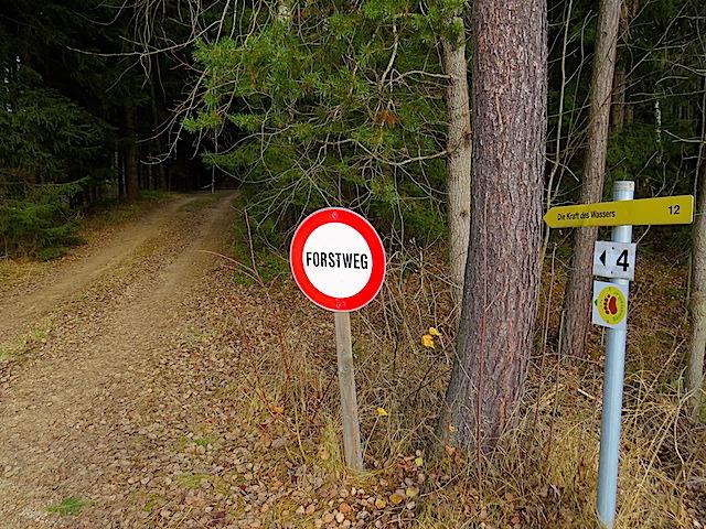 Aufstieg Föhrenwald