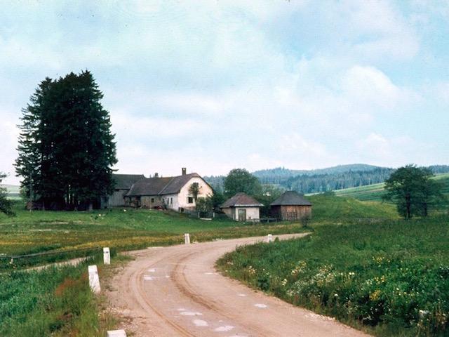 Der alte Meierhof