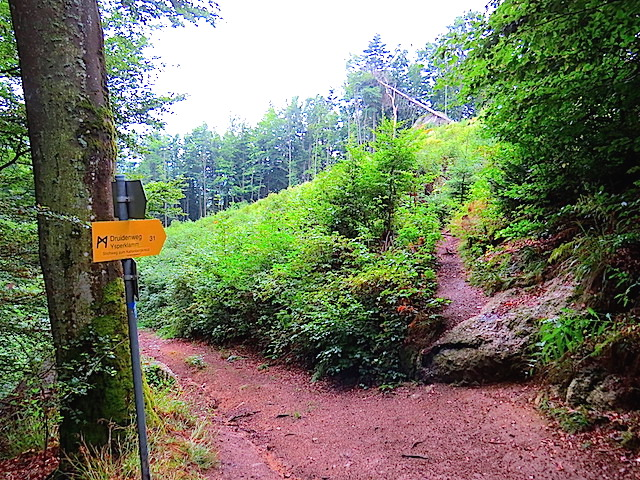 Richtung Kaltenbergkreuz