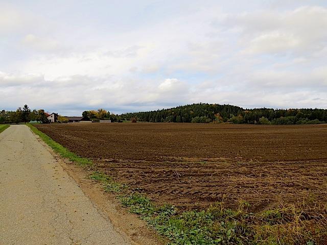 Der Holmberg