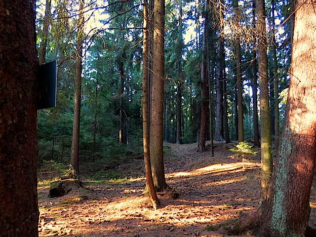 Richtung Streitbach