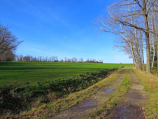 Richtung Kirchberg am Walde