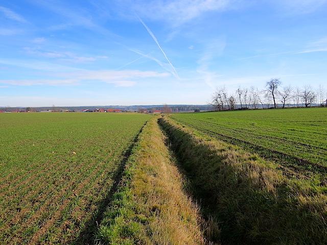 Wiesenweg - Graben