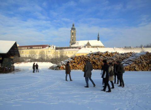 Vielfalt in der Einheit<br>Zisterziensische Klosterlandschaften in Mitteleuropa