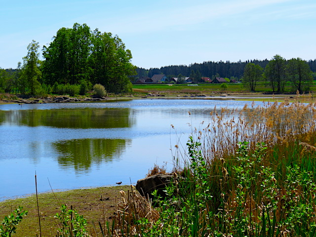 Stölzlinger Teich