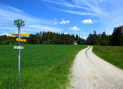 Entlang der Europäischen Hauptwasserscheide (Kirchberg am Walde – Langschwarza)