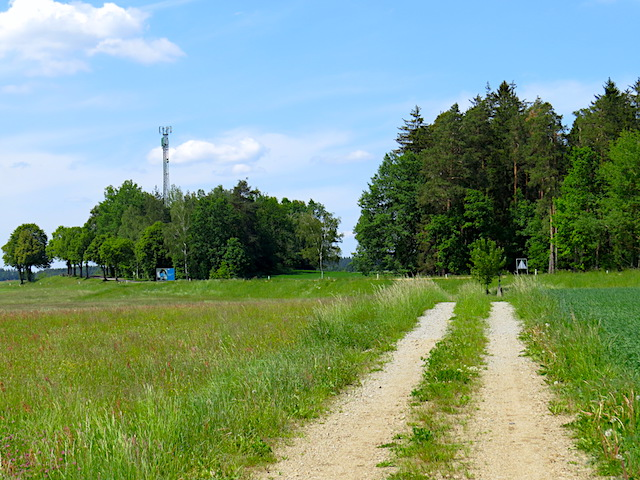 Feldweg Richtung Bundesstraße