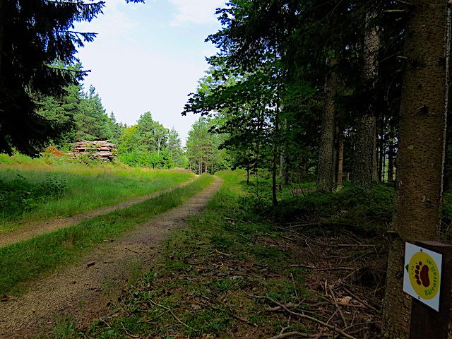 Richtung Lembach