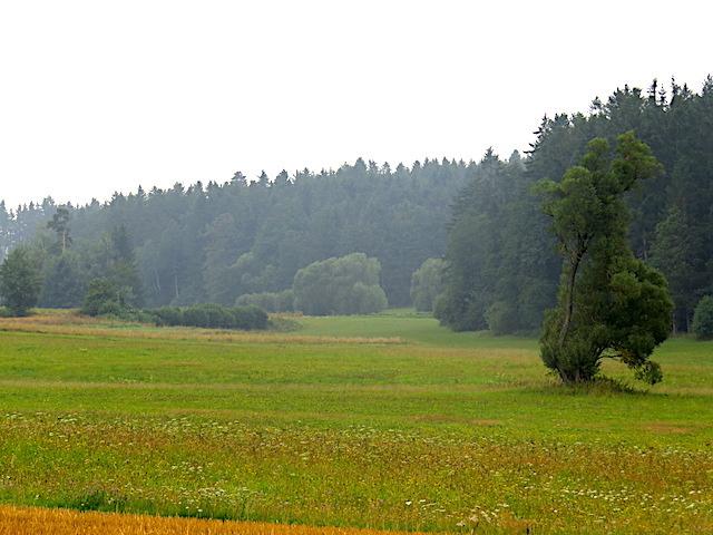 Gradnitzbachtal