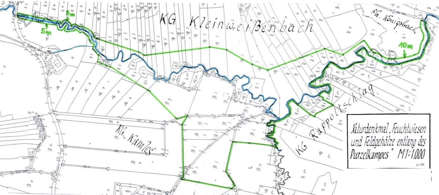 Feuchtwiesen und Feldgehölze