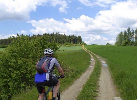 Der Waldviertler Kulturpfad 665 – dieses Mal per Mountainbike