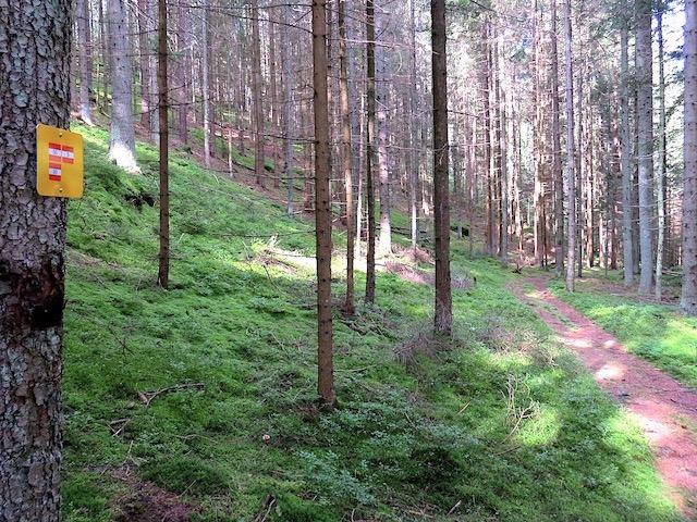 Weißenbachtal