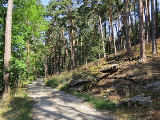 Richtung Böhmischer Mauer