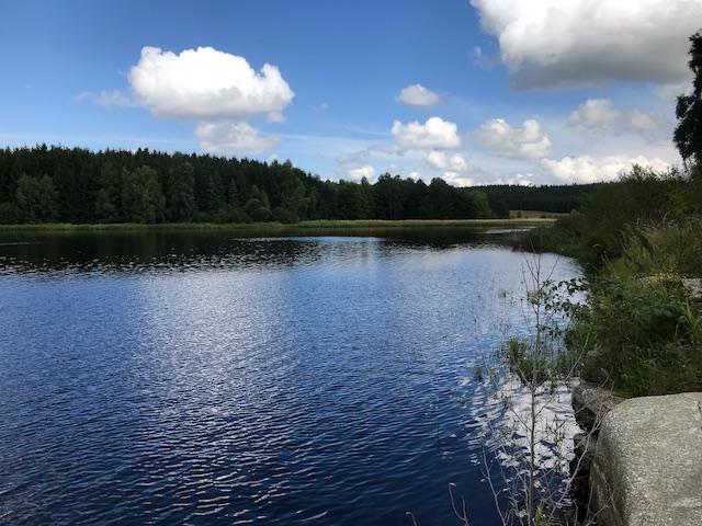 Der Winkelauer Teich
