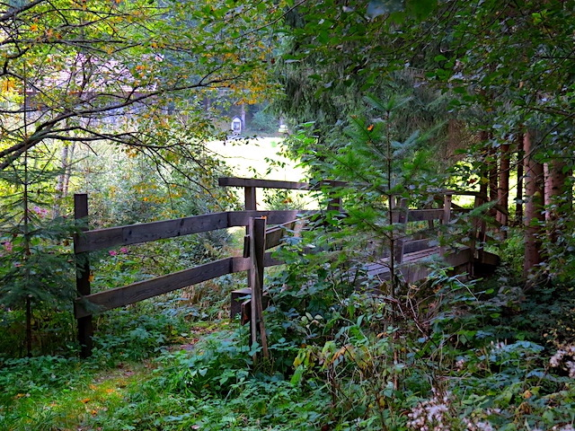 Holzsteg Kleiner Kamp